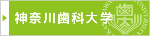 神奈川歯科大学